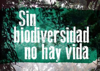 El Gobierno español infravalora la pérdida de biodiversidad