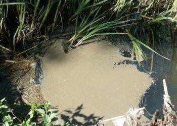 La Fiscalía denuncia a varios responsables de los vertidos al río Guadalix