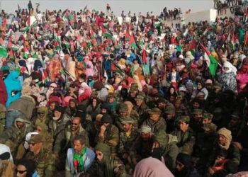 Miles de saharauis toman las calles de los campamentos para recibir a sus héroes tras 44 días de batallas