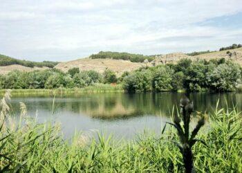 «La proliferación de algas en una laguna protegida como Soto de las Juntas provoca la desaparición de fauna y malos olores»