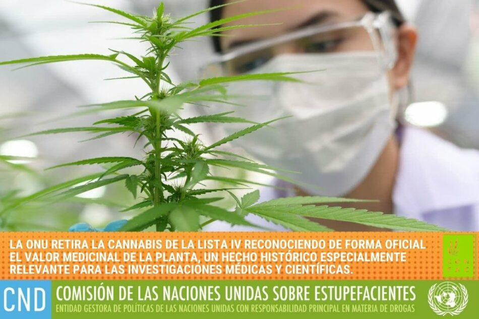 «¿Se abre la veda para la regulación del cannabis en España?»