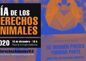Animalistas convocan una acción en la capital valenciana por el Día Internacional de los Derechos de los Animales