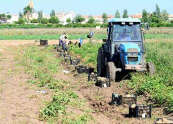 Compromís enmienda los PGE para pedir un  IVA reducido para costes de producción agrarios