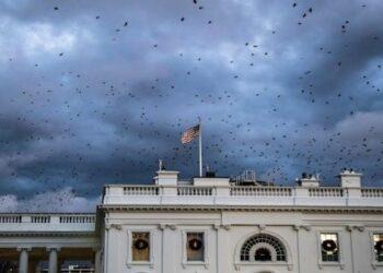 Justicia investiga posible trama de sobornos en la Casa Blanca