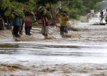 Alianza por la Solidaridad reclama financiación a los países en desarrollo para afrontar el cambio climático