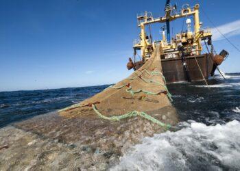 Greenpeace denuncia que el expolio de los recursos de África occidental aboca a muchas personas a emigrar