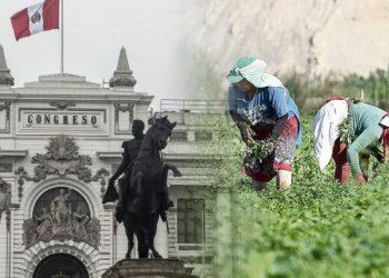Congreso en Perú debate dictamen sobre nueva Ley Agraria