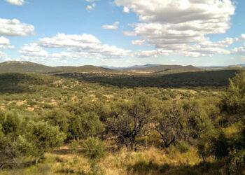 Ecologistas Extremadura pide proteger sin dilación a la Sierra de la Mosca en Cáceres como Espacio Natural Protegido