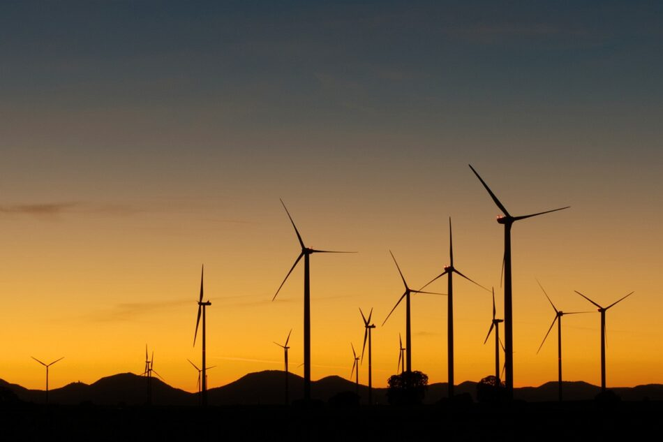 La Plataforma en Defensa de la Cordillera Cantábrica presenta recurso al procedimiento de evaluación ambiental implantado por el Ministerio de Transición Ecológica