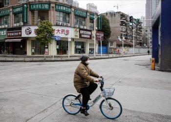 OMS: Equipo y estudio del rastreo de origen de COVID-19 en Wuhan son independientes