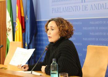 """IU Andalucía afea al Gobierno andaluz el """"desmantelamiento"""" del Instituto de Enseñanza a Distancia """"sin diálogo ni alternativas"""""""