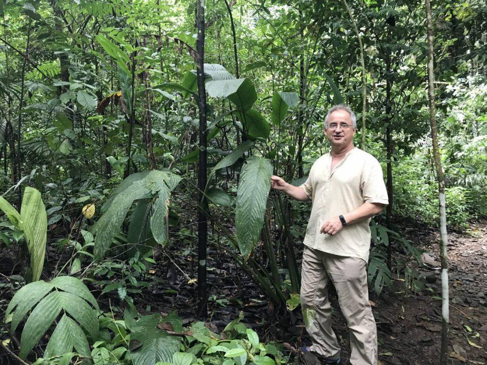 """Josep Peñuelas, ecólogo y profesor de investigación: """"Llevar una vida sostenible nos haría más felices»"""