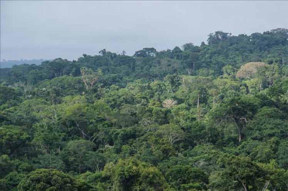 Migración infantil por selva del Darién multiplicó su cifra
