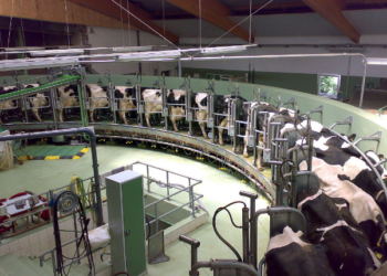 Solicitan que los fondos de recuperación europeos apoyen una transición justa y sostenible del sistema agroalimentario