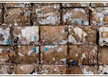 16 entidades de la sociedad civil piden al Consejo de Estado que no dé luz verde al Anteproyecto de Ley de Residuos