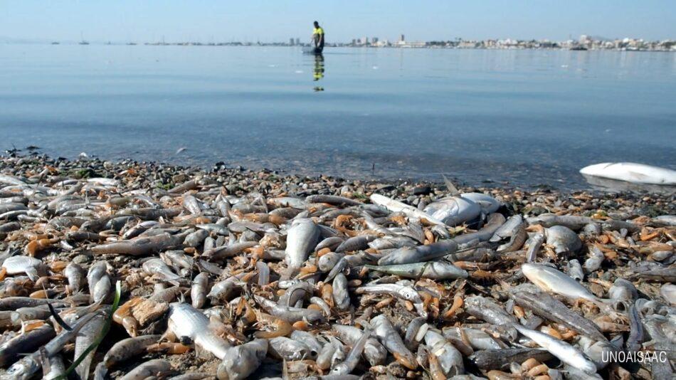 El Convenio de Barcelona de Naciones Unidas anuncia que entrará al fondo de la queja sobre el Mar Menor
