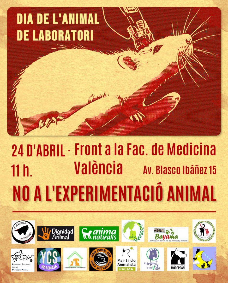 24 d´abril: «No a l´experimentació animal» (València)