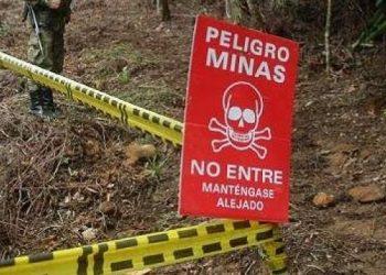 Venezuela avanza gestiones ante la ONU sobre asesoramiento a la FANB en desactivación de minas en frontera con Colombia