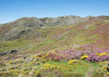Anova denuncia que os parques eólicos Prada e Alto Cabrera, de alto impacto en Pena Trevinca, son dous dos maiores exemplos do modelo do espolio vixente a nivel galego