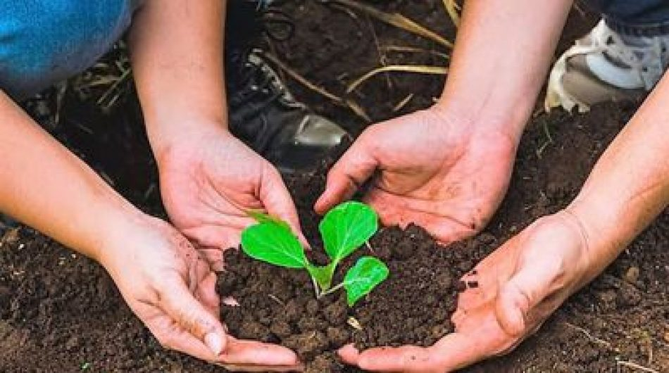 26 organizaciones ambientalistas y agroecológicas piden a Biden fin de sanciones a Cuba