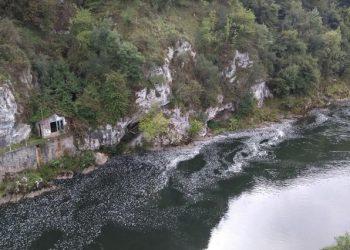 El Tribunal Supremo estima un recurso de IIDMA frente a los vertidos de la Central Térmica de Soto de Ribera en el río Nalón
