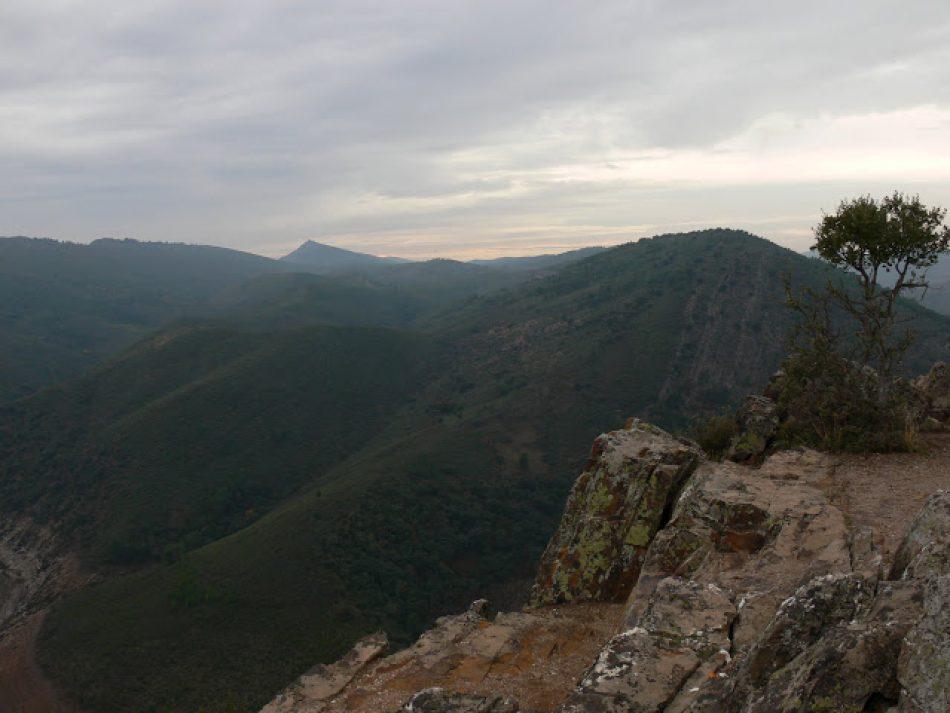 Satisfacción en Ecologistas Extremadura tras 16 meses sin monterías ni suelta de rehalas dentro del Parque Nacional de Monfragüe