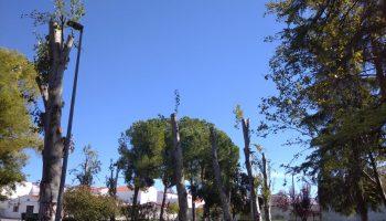 El Ayuntamiento de los Santos de Maimona, nominado a La Motosierra de Atila