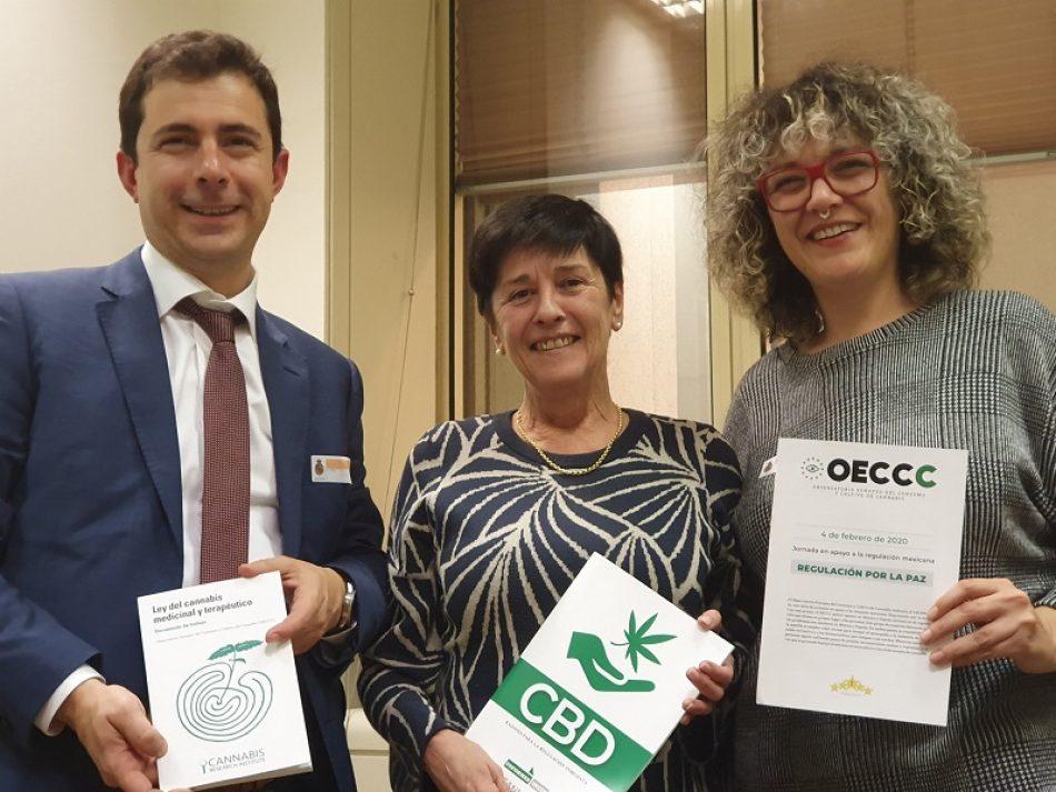 Expertos piden que la futura regulación del cannabis medicinal sea inclusiva y con diversas vías de acceso
