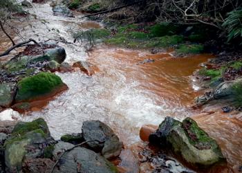 Alertan aos concellos mineiros da afección á saúde polo envelenamento por metais pesados