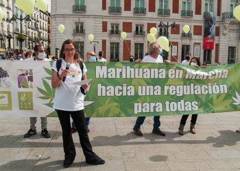 El PNV registra una propuesta para estudiar el cannabis medicinal mientras Unidas Podemos presentará un proyecto de ley para su regulación integral