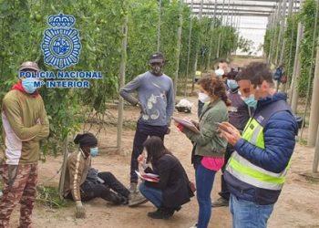 """""""Quienes explotan y abusan de sus trabajadores en el campo son  los que manchan la agricultura almeriense"""""""