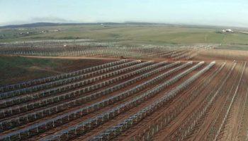 Verdes Equo defiende el autoconsumo y la eficiencia energéticas como alternativa ecosocial a la destrucción del territorio con megafotovoltaicas