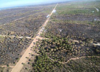 """Unidas Podemos pide """"acelerar"""" las medidas para eliminar la extracción ilegal en Doñana y su entorno tras la condena europea a España"""