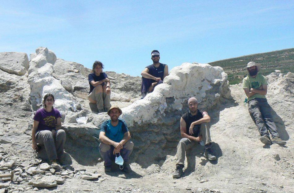 Hallan en Teruel una columna vertebral de más de cinco metros de un enorme dinosaurio