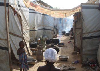 La escalada de violencia provoca una grave crisis humanitaria en el estado de Zamfara (Nigeria)