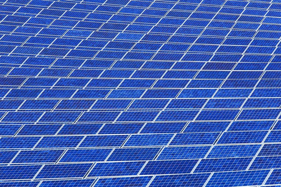 Denuncian al Ayuntamiento de Jimena de la Frontera por presunto incumplimiento de la Ley de Transparencia al no facilitar información sobre los proyectos fotovoltaicos que amenazan el municipio