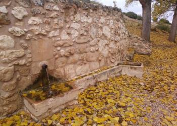 El patrimonio histórico-cultural asociado a las vías pecuarias madrileñas corre serio peligro
