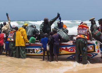 Greenpeace revela el dramático impacto de la industria europea de harinas y aceite de pescado en África occidental