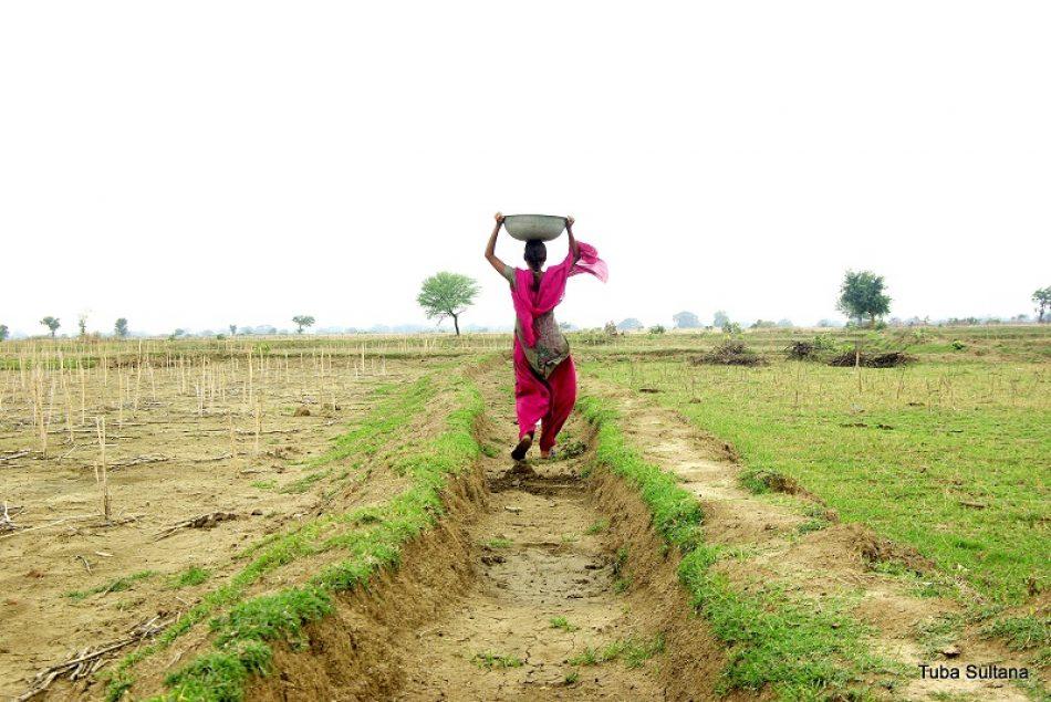 3.200 millones de personas vulnerables afectadas por la degradación del 75% de la superficie terrestre