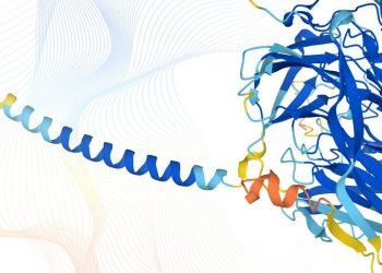 Publicada la imagen más completa de las proteínas que componen el proteoma humano