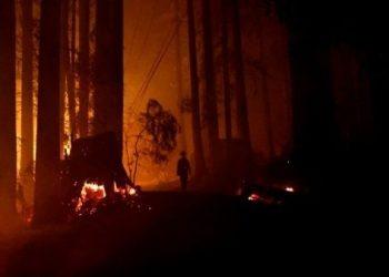 Incendio forestal ha destruido más de 80.000 hectáreas en California, EE.UU.