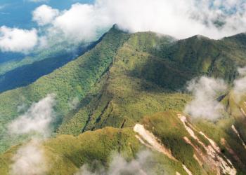 Gobierno peruano aprueba Reserva Indígena Kakataibo Norte y Sur