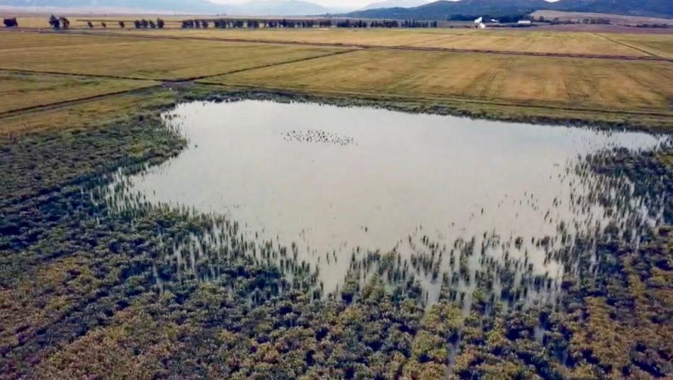 Unidas Podemos pide en el Congreso medidas para la restauración de los humedales de la Laguna de Antela, la Laguna de la Janda y Mar de Campos