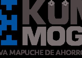 Küme Mogen, el Banco Mapuche
