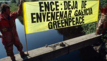 Greenpeace pide a Ence que planifique el cierre de la celulosa en Lourizán de inmediato
