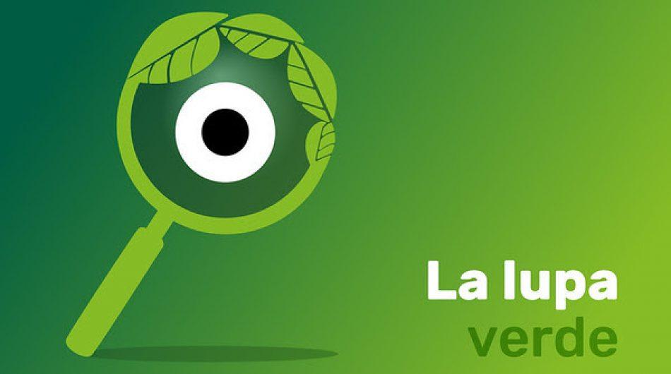 La Lupa Verde, el observatorio de Greenpeace para vigilar que la recuperación económica sea verde y justa