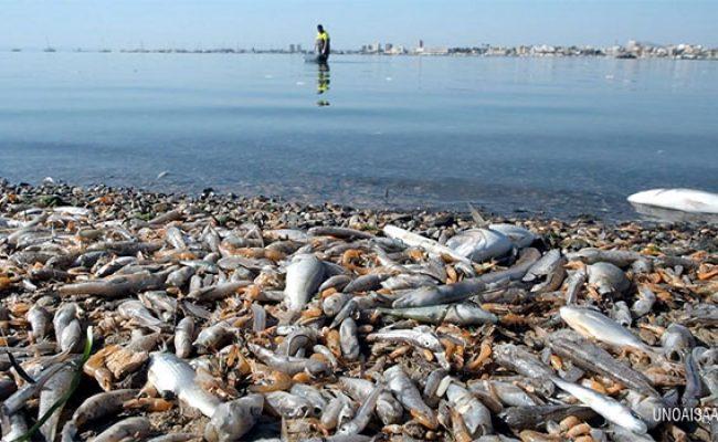 Las recientes lluvias en el Mar Menor demuestran que las medidas en origen y basadas en la naturaleza son necesarias