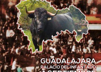 Guadalajara Antitaurina acerca de la definitiva suspensión de la miniferia taurina para septiembre