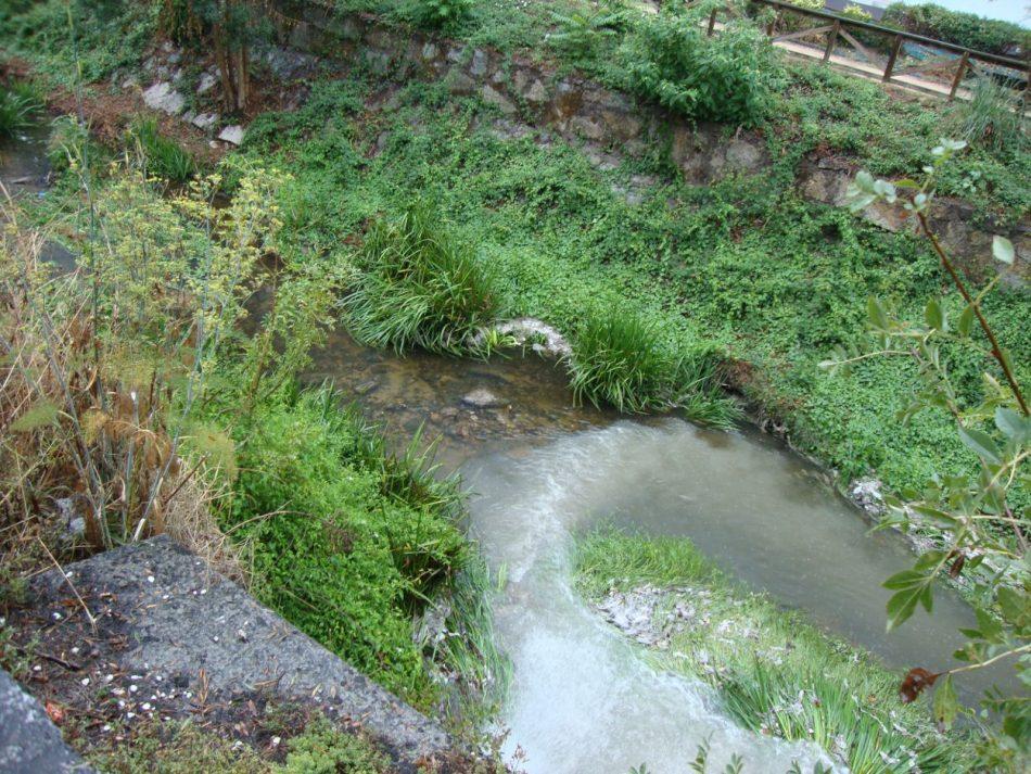 A Confederación Hidrográfica Miño-Sil ábrelle un expediente sancionador ao Concello de San Cibrao das Viñas polo lamentable estado ambiental do río Barbaña