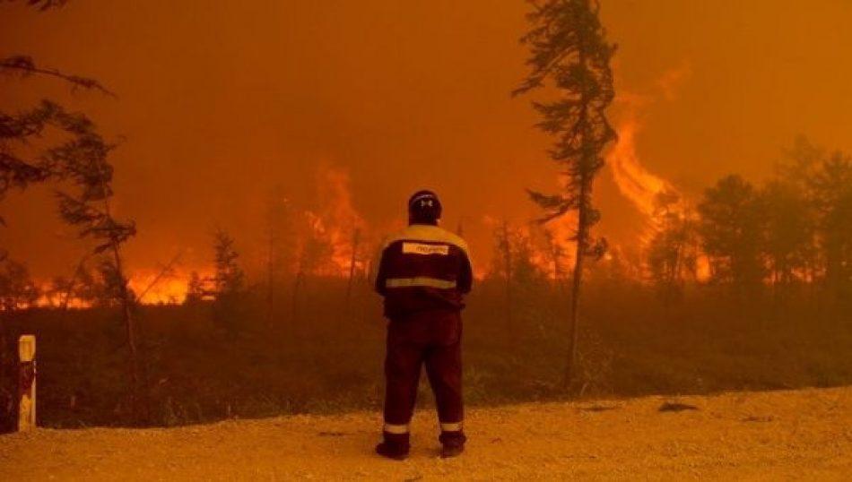Cambio climático: la huella devastadora del ser humano